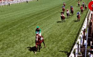 Shergar Wins Derby 1981